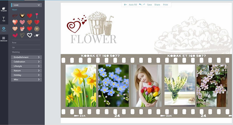 Creative flower collage