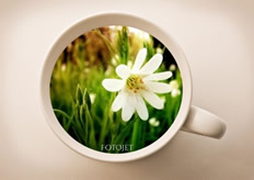 creative coffee cup sample