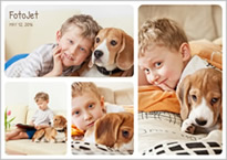 beagle and kid collage