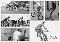 bicyclers collage
