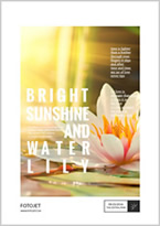 sunshine and flower poster