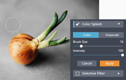 Color Splash - Custom Color Splash Effects for Photos Online