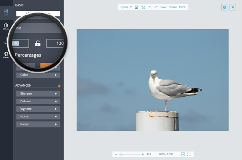 Online Image Resizer - Resize Your Images & Photos for Free