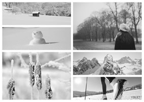 Black white winter