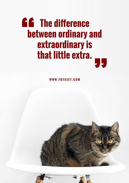 '.Cat Photo Motivational Quote Poster Template.'