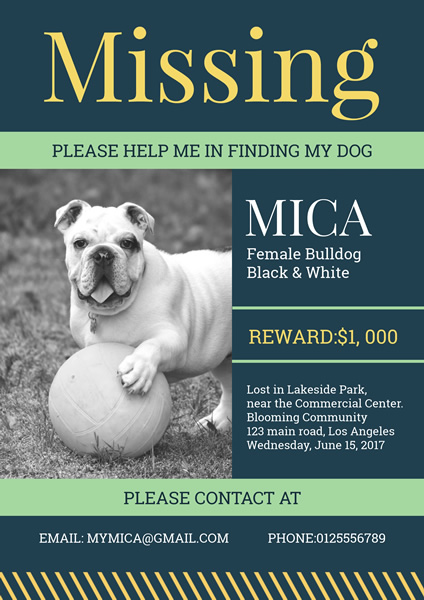 Lost Dog Poster Design Template  Lost Dog Poster Template