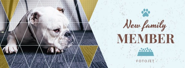 Dog Facebook Cover Photo Template