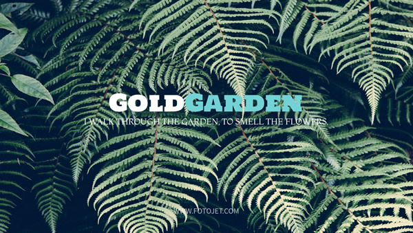 Gold Garden Google Plus Cover Photo Template