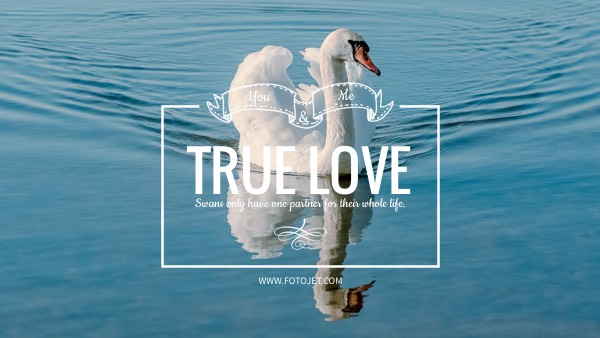 True Love YouTube Channel Art Template